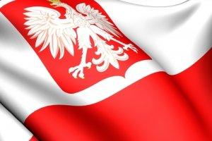 Godło Polski na biało-czerwonym tle