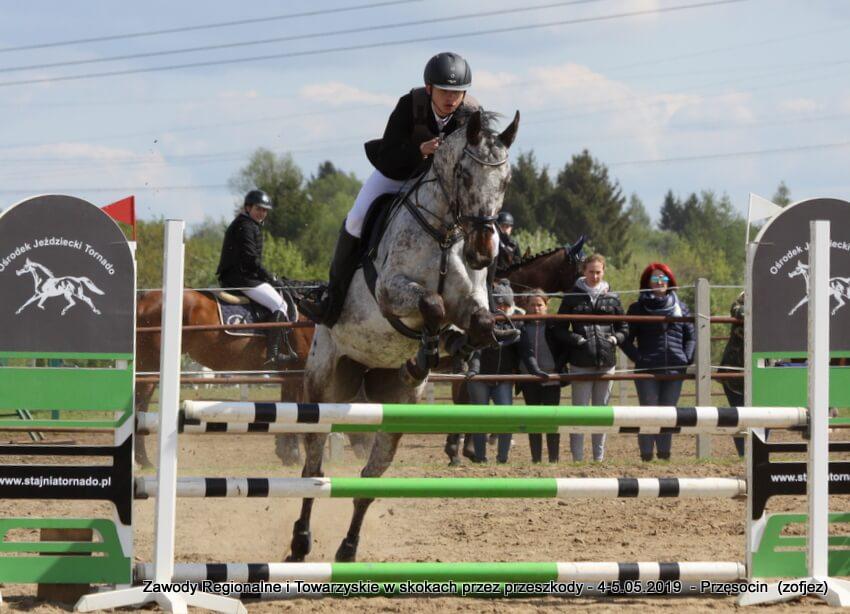 9264676170c2f 50 jeźdźców i koni wzięło udział w Regionalnych Towarzyskich Zawodach  Jeździeckich w Skokach przez Przeszkody