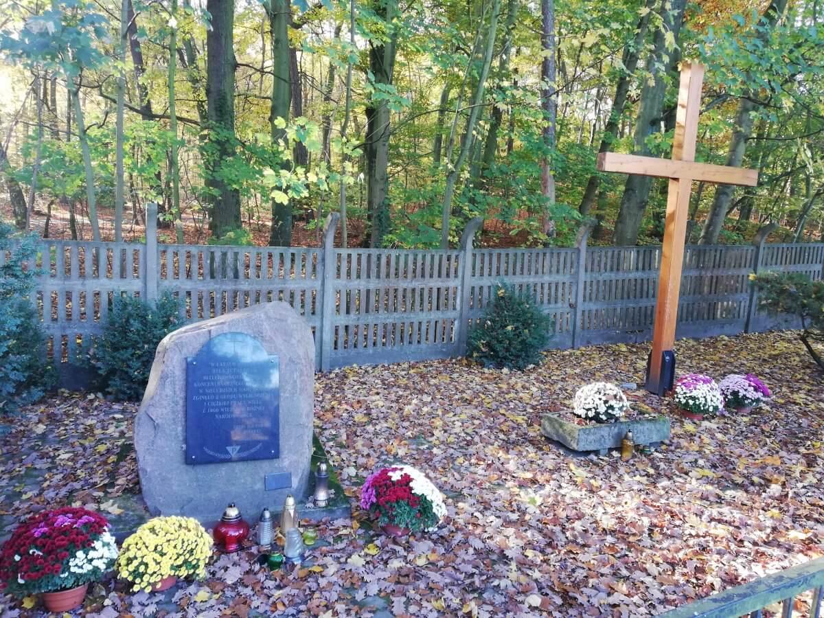 Pomnik przy ul. Ofiar Stutthofu w Policach przyozdobiony chryzantemami