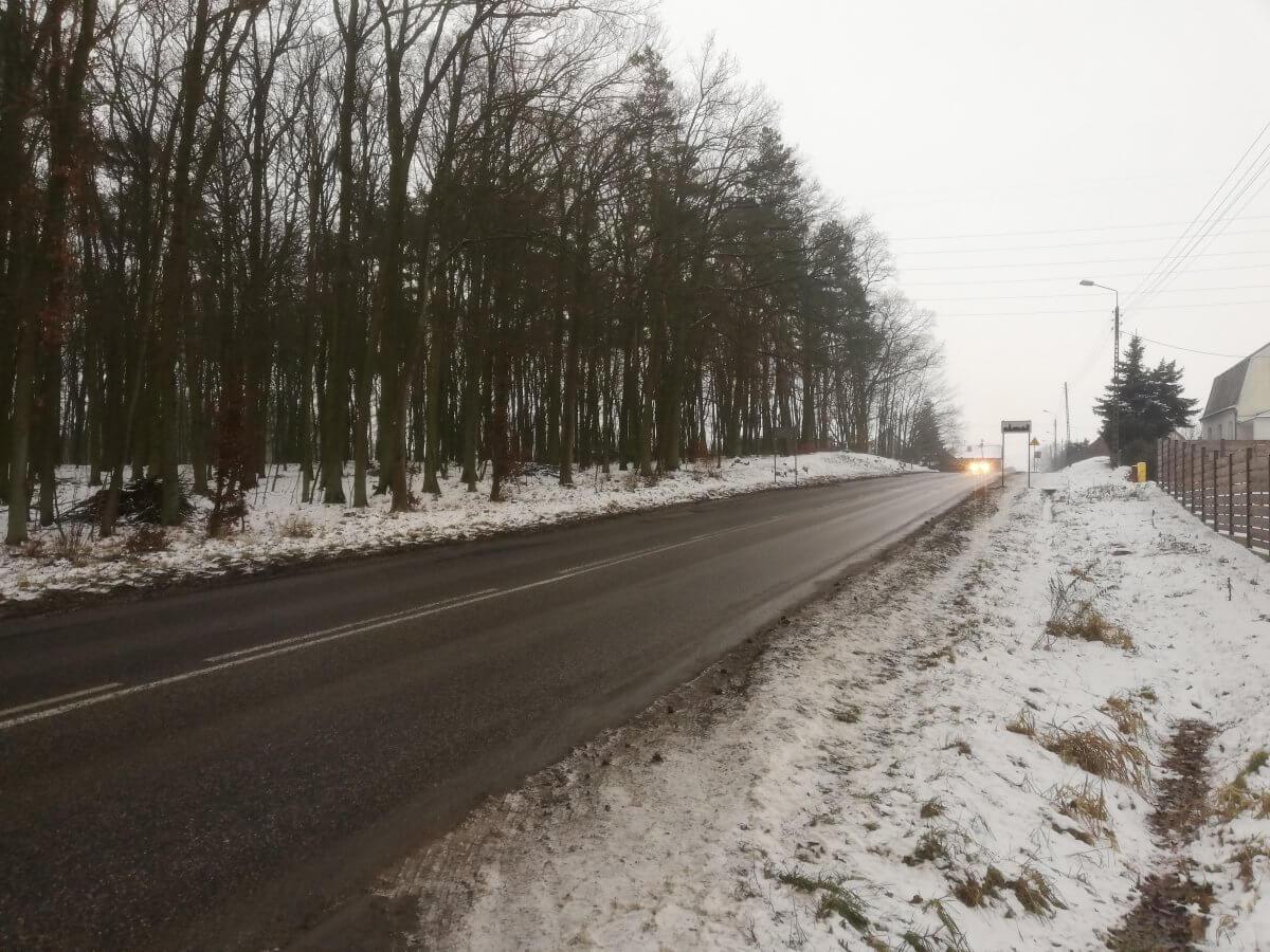 Odcinek drogowy Police-Szczecin przez miejscowość Przęsocin