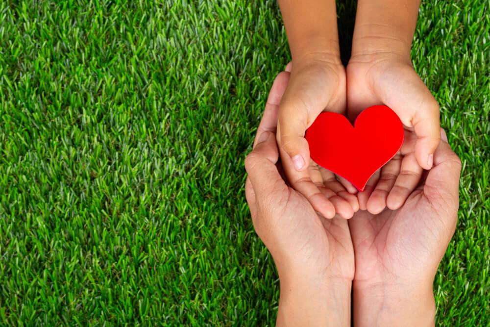 Dłonie z sercem na trawie